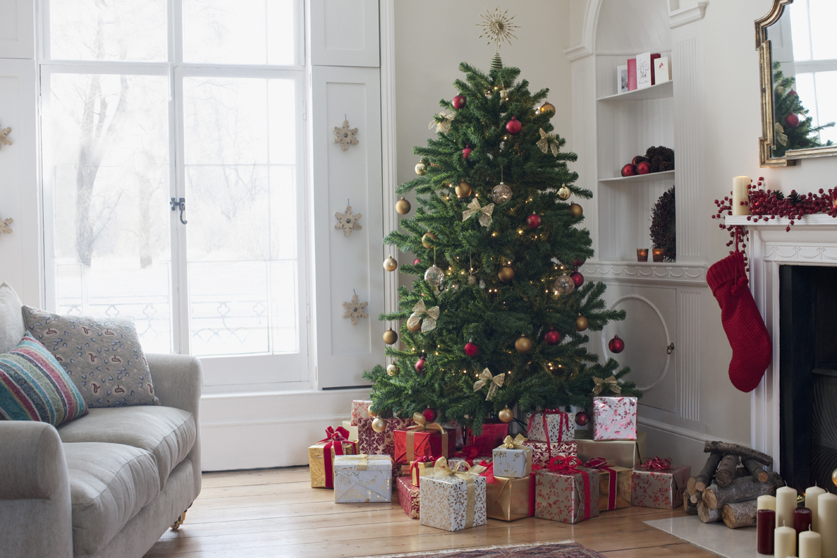 How to keep a christmas tree alive how to keep a Big christmas tree small space