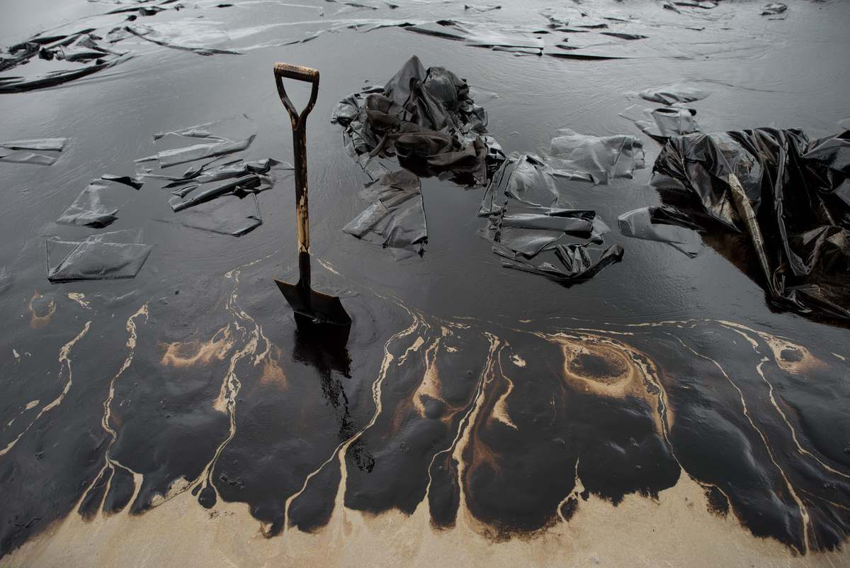 how to help clean up oil spills