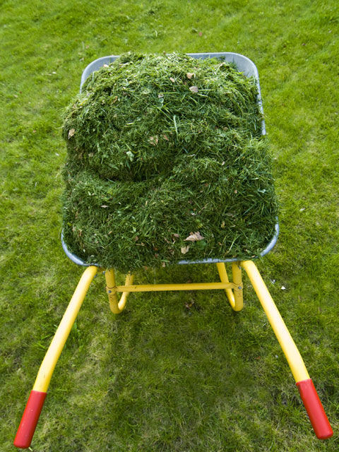 how to cut grass with side discharge