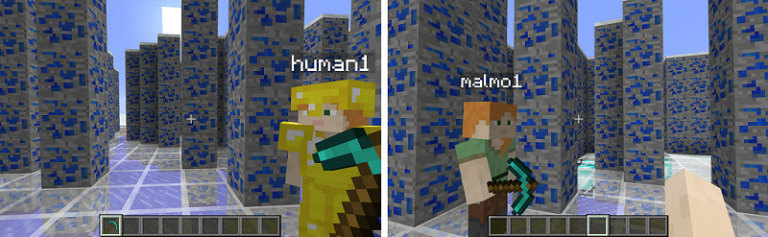 Humans and Malmo in Minecraft
