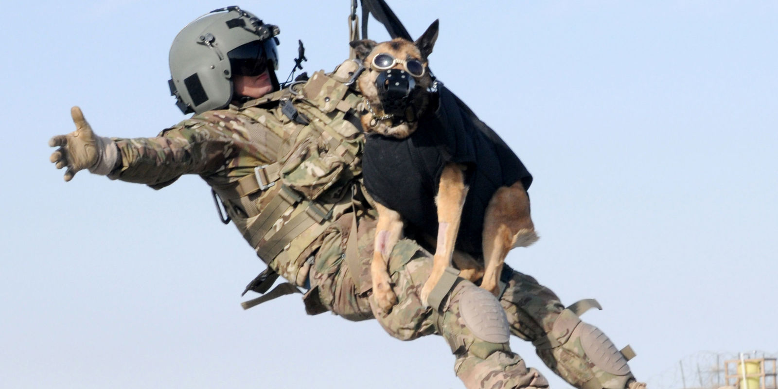 Today is National K9 Veterans Day