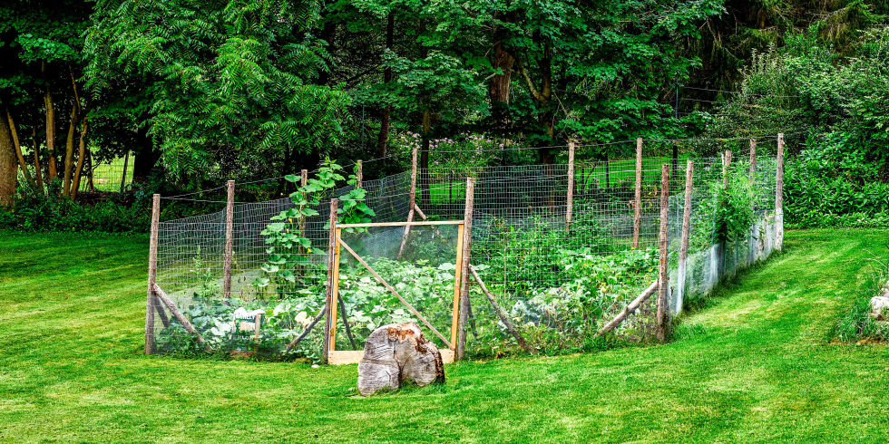 Garden Fencing Ideas privacy garden fence ideas modern patio furniture design Its Just To Keep The Deer Out Sure But Its Also A Large Permanent Highly Visible Lawn Ornament Make It How You Want It