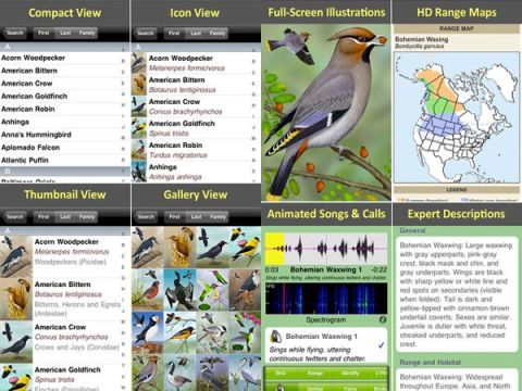 Ibird journal android app