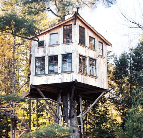 Extreme treehouses for Building a house in maine