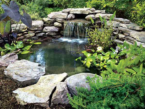 Small Backyard Pond Designs backyard pond or raised bed using a large plastic container A Pond That Is Adjacent To A Path Also Can Pose A Tripping Hazard Especially At Night In Such An Area The Path Should Be Illuminated With Low Voltage