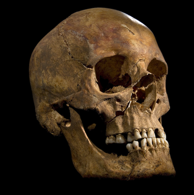 richard iii�s bones confirmed by scientists � remains of