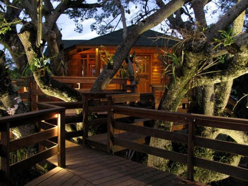Pleasant 10 Best Treehouse Plans And Designs Coolest Tree Houses Ever Inspirational Interior Design Netriciaus