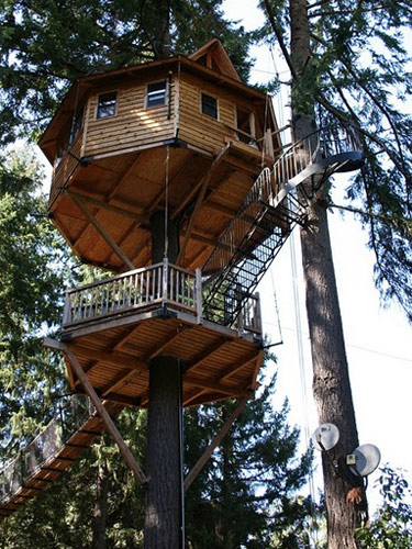 Circular Tree House 10 best treehouse plans and designs - coolest tree houses ever