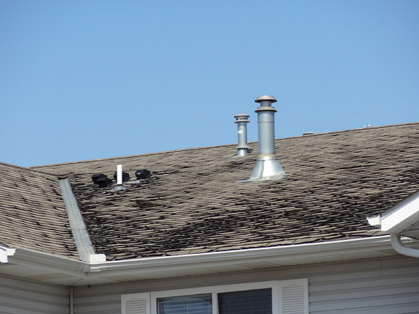 My Roof Is Leaking 8 things your roof is trying to tell you