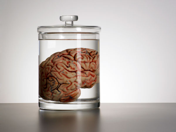 The NeuroTimes - Magazine cover