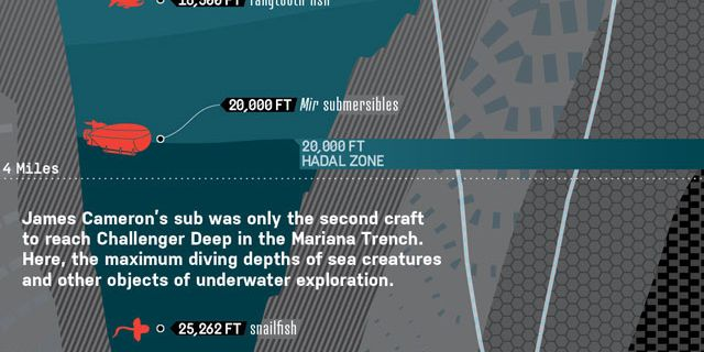 Record Breaking Mariana Trench Dive James Cameron S Deep Ocean Dive Diagrammed