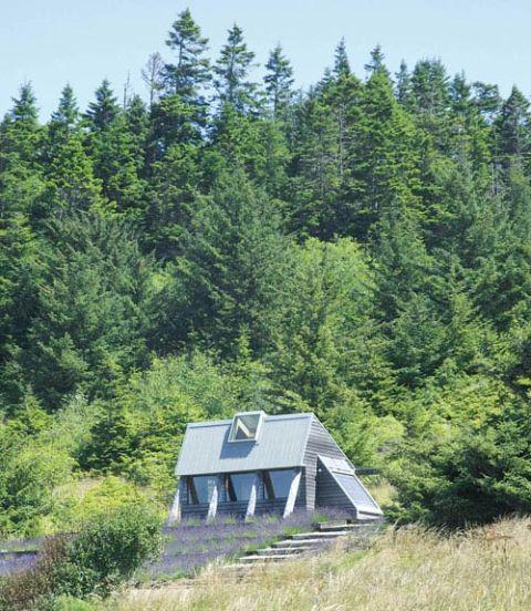 Small green homes small eco houses for Small houses oregon