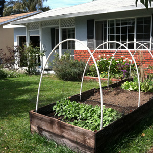 Build a Raised Garden Bed Cover