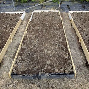 Raised Bed Garden Ideas Gardening Plans