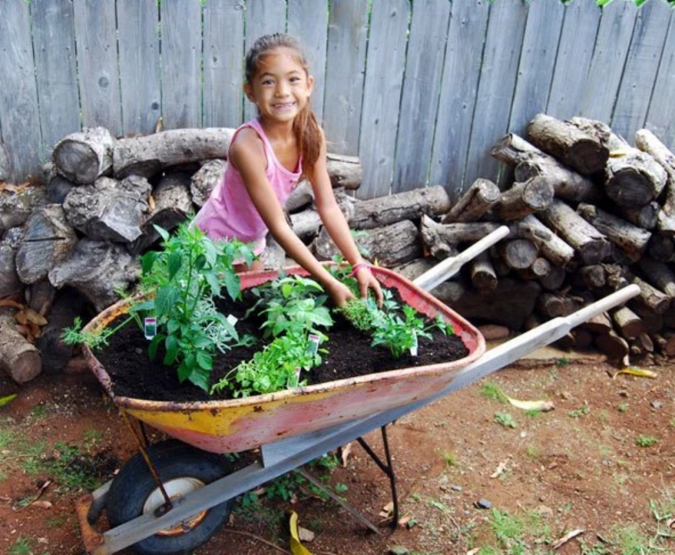Wheelbarrows make a natural planter for herbs and flowers. Just drill some drainage holes and add soil and seedlings. Source: Built by Kids